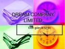 DREAM COMPANY LIMITED