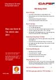 Báo cáo kinh tế tài chính năm 2011