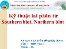 Kỹ thuật lai phân tử Southern blot, Northern blot