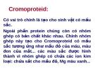 Cromoproteid