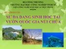 Báo cáo: Sự đa dạng sinh học tại vườn quốc gia Núi Chúa