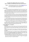 Đề tài: BÀI HỌC KINH NGHIỆM TRONG VIỆC NGẦM HÓA ĐIỆN VÀ THÔNG TIN TRÊN ĐƯỜNG TRẦN HƯNG ĐẠO (TP.HCM)