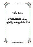 Tiểu luận CNH-HĐH nông nghiệp nông thôn P.6