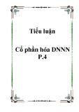 Tiểu luận Cổ phần hóa DNNN P.4