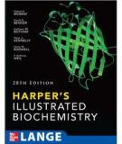 Harper's Illustrated Biochemistry Twenty-Eighth Edition_2