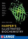 Harper's Illustrated Biochemistry Twenty-Eighth Edition_1