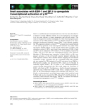 Báo cáo khoa học: Snail associates with EGR-1 and SP-1 to upregulate transcriptional activation of p15INK4b