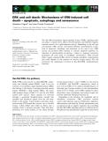 Báo cáo khoa học: ERK and cell death: Mechanisms of ERK-induced cell death – apoptosis, autophagy and senescence