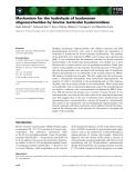 Báo cáo khoa học: Mechanism for the hydrolysis of hyaluronan oligosaccharides by bovine testicular hyaluronidase