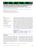 Báo cáo khoa học: Functions and cellular localization of cysteine desulfurase and selenocysteine lyase in Trypanosoma brucei