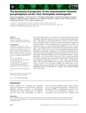 Báo cáo khoa học: The biochemical properties of the mitochondrial thiamine pyrophosphate carrier from Drosophila melanogaster