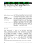 Báo cáo khoa học: Characterization of an N6 adenine methyltransferase from Helicobacter pylori strain 26695 which methylates adjacent adenines on the same strand