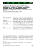 Báo cáo khoa học: The plasminogen activator inhibitor 2 transcript is destabilized via a multi-component 3¢ UTR localized adenylate and uridylate-rich instability element in an analogous manner to cytokines and oncogenes