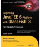 Beginning Java EE 6 Platform with GlassFish 3
