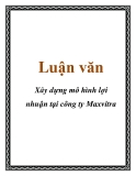 Luận văn: Xây dựng mô hình lợi nhuận tại công ty Maxvitra