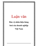 Luận văn: Bảo vệ nhãn hiệu hàng hoá của doanh nghiệp Việt Nam
