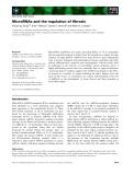 Báo cáo khoa học: MicroRNAs and the regulation of fibrosis