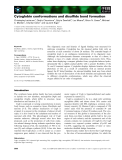 Báo cáo khoa học: Cytoglobin conformations and disulfide bond formation