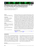 Báo cáo khoa học: Helicobacter pylori acidic stress response factor HP1286 is a YceI homolog with new binding specificity