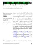 Báo cáo khoa học: Human d opioid receptor biogenesis is regulated via interactions with SERCA2b and calnexin