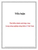 Tiểu luận:  Tìm hiểu chính sách hộp vàng trong nông nghiệp nông thôn ở Việt Nam