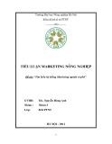 Tiểu luận:Tìm hiểu hệ thống Marketing ngành cà phê