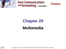 Chapter 29 Multimedia