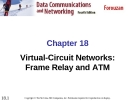 Chapter 18 Virtual-Circuit Networks: Frame Relay and ATM