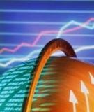 Thương mại điện tử: Còn lâu mới bão hòa