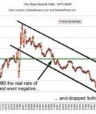The Puzzle of Persistently Negative Interest  Rate-Growth Differentials: Financial Repression  or Income Catch-Up?