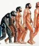 Thuyết tiến hóa lớn
