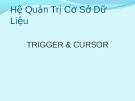 Hệ Quản Trị Cơ Sở Dữ Liệu -   TRIGGER & CURSOR