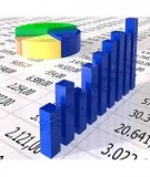 Bài giảng chương 2 : bảng cân đối kế toán