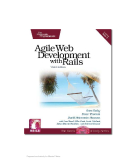 Agile Web Development with Rails, 3rd Edition