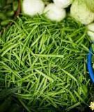 Các loại rau tốt nhất cho mùa đông
