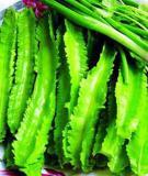 Đậu rồng: Thực phẩm nhiều dinh dưỡng