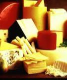 6 thực phẩm cung cấp canxi hàng đầu