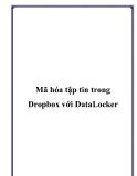 Mã hóa tập tin trong Dropbox với DataLocker