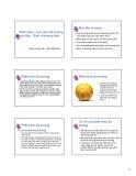 Thuyết trình: Phân khúc - Lựa chọn thị trường mục tiêu - định vị thương hiệu