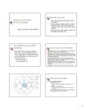 Chiến lược sản phẩm ( product)