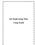 Kỹ thuật ương Tôm Càng Xanh