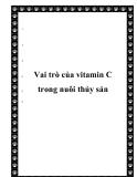 Vai trò của vitamin C trong nuôi thủy sản