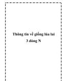 Thông tin về giống lúa lai 3 dòng N