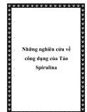 Những nghiên cứu về công dụng của Tảo Spirulina