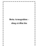 Betta Armageddon – dòng cá đốm lửa