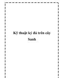 Kỹ thuật ký đá trên cây Sanh