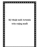 Kỹ thuật nuôi Artemia trên ruộng muối