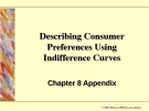 Describing Consumer Preferences Using Indifference Curves