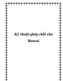 Kỹ thuật ghép chồi cho Bonsai