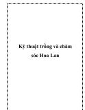 Kỹ thuật trồng và chăm sóc Hoa Lan